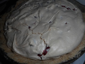crackle tart 005