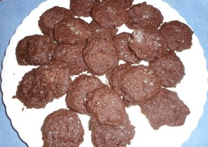 oat muffins 007