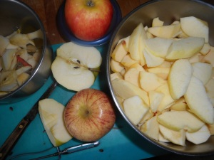 winter salad, apple pie 001