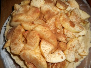 winter salad, apple pie 003