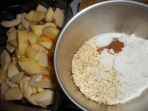 yogurt and apple crisp 006