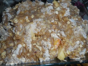 yogurt and apple crisp 007