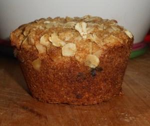 muffin close up 002