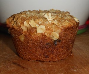 muffin close up 002