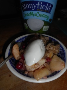 yogurt and apple crisp 028