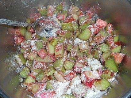 rhubarb pie, ginger stir fry, salmon with peas 040