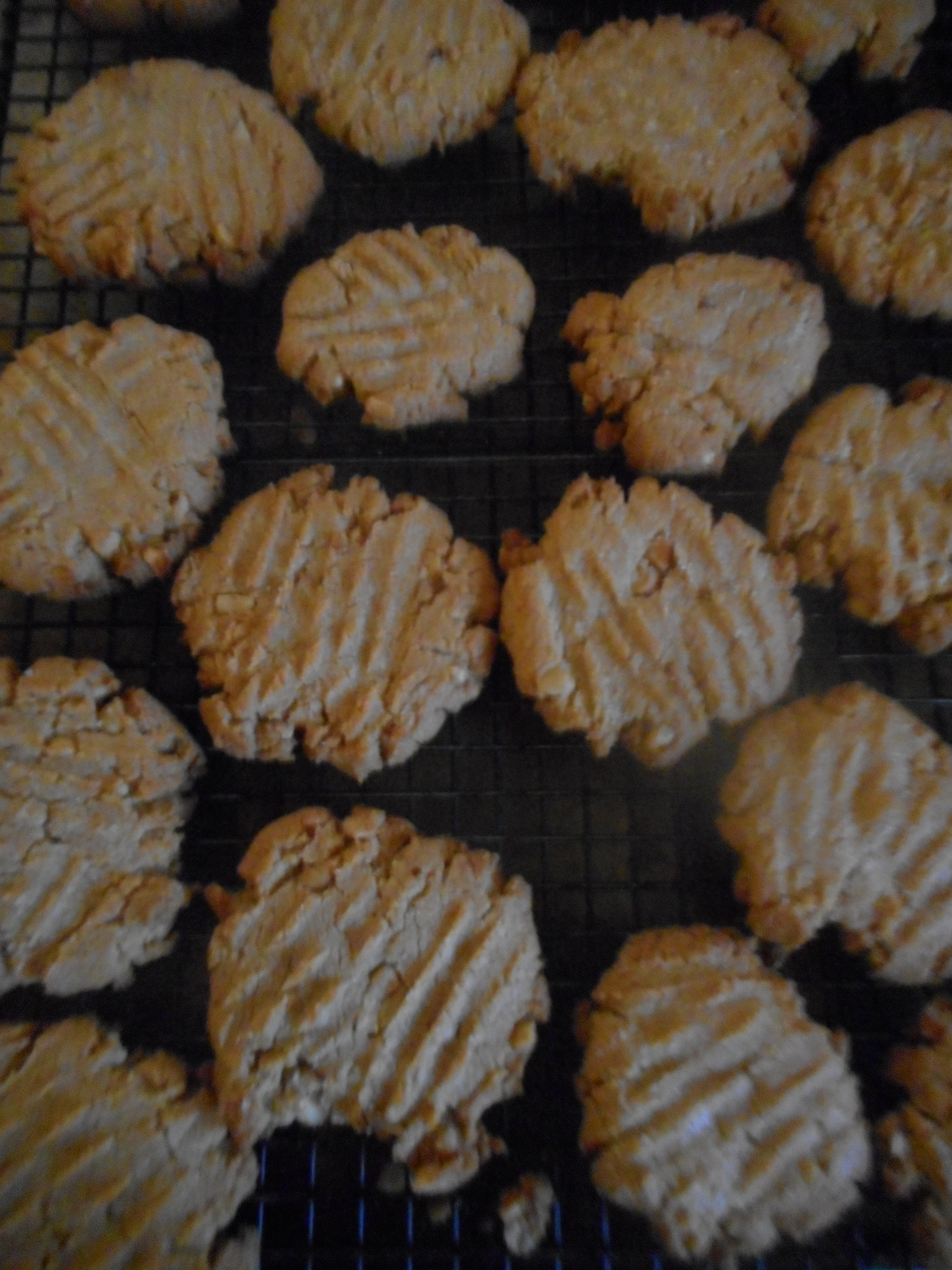 cranberry apple pie and peanut butter cookies 009
