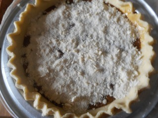shoe fly pie, hash 017