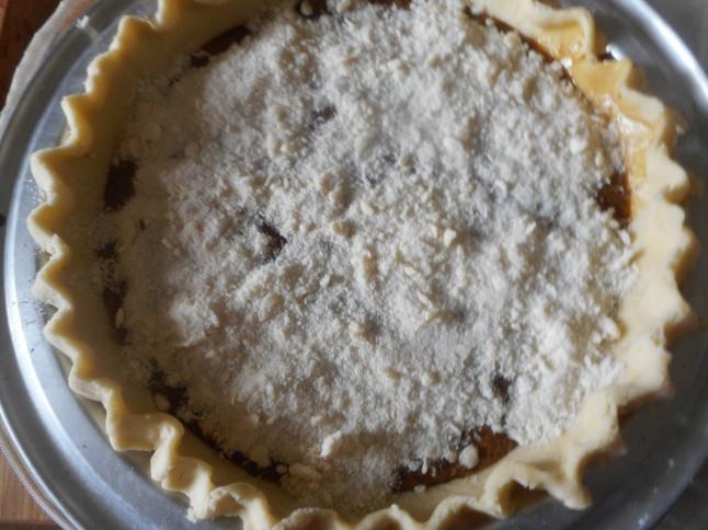 shoe fly pie, hash 017
