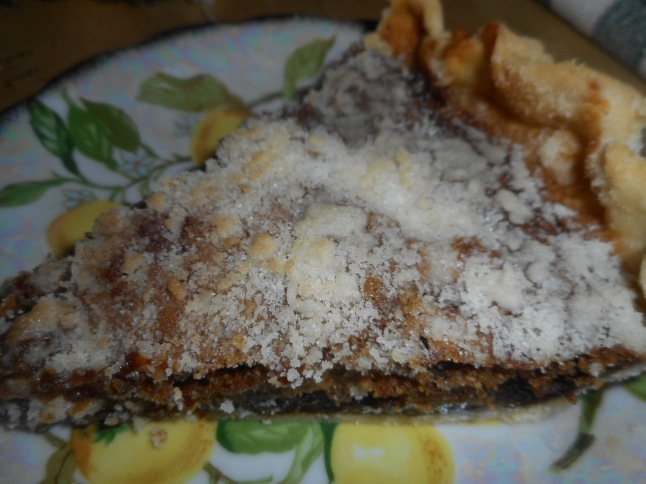 shoe fly pie, hash 021