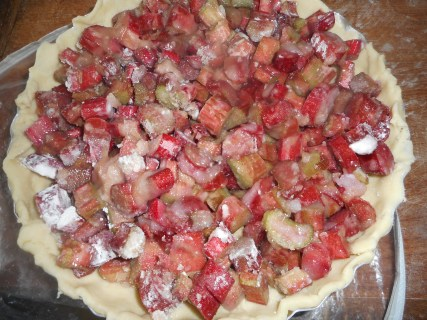 rhubarb sour cream pie 001