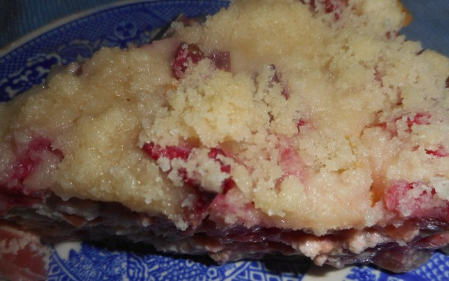 rhubarb sour cream pie 010