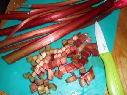 rhubarb frangipani pie 001