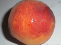raspberry-jam-014