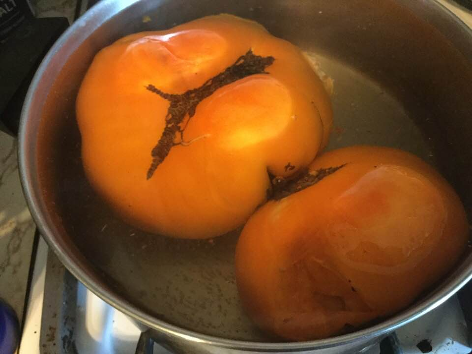golden tomatoes in pot