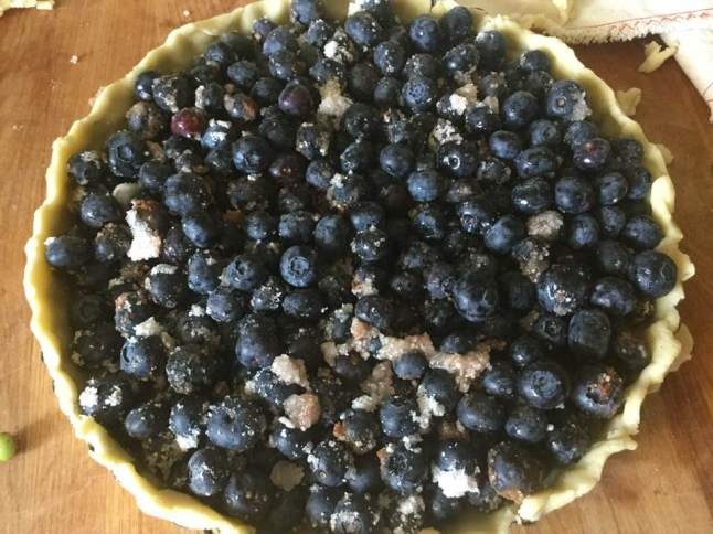 blueberry tart, untopped