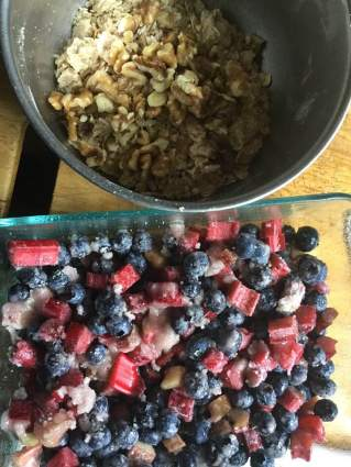blueberry rhubarb crisp in two dishes